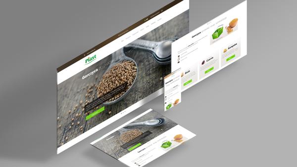 Strona internetowa dla firmy Piast